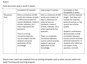 table of the rubric used in the assessment